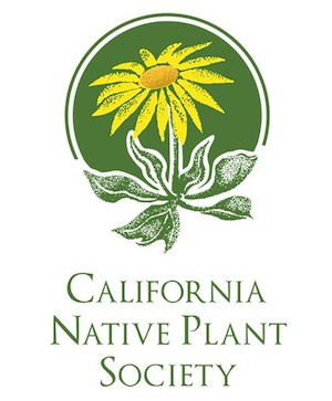 cal native plan_300