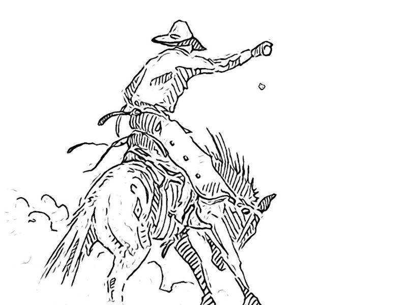 Buckaroo Cowboy